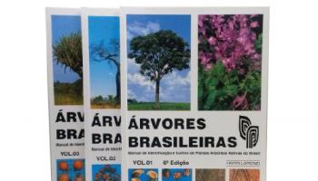 ÁRVORES BRASILEIRAS